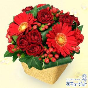 お祝い返し 花キューピットの赤ガーベラと赤バラのアレンジメント 花 ギフト お祝い プレゼント|i879