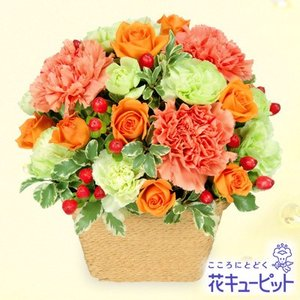 お祝い返し 花キューピットのオレンジアレンジメント 花 ギフト お祝い プレゼント|i879