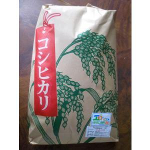 特別栽培コシヒカリ(精米)|ibaraki-shop