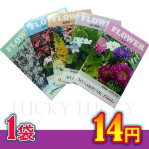 花の種 ちびタネ 花の種子 500袋販売 花の種 ノベルティ 季節に合した花の種 夏蒔き花の種 総付け景品 総付景品