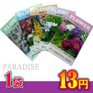 花の種 ちびタネ 花の種子 1000袋販売 ノベルティ 花の種 秋咲き花の種 秋蒔き 総付け景品 総付景品