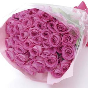 プレゼント バラの花束50本 ピンク (メッセージカード 切花延命剤 お手入れのしおり付き)E7102-07 【代引不可】 ibepara