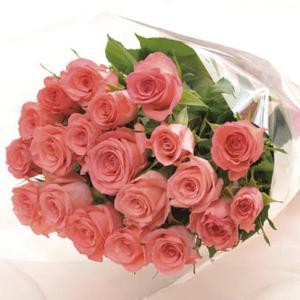 プレゼント バラの花束20本ピンク (メッセージカード 切花延命剤 お手入れのしおり付き)E7102-07 【代引不可】 ibepara