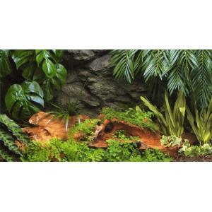 コトブキ3Dスクリーン密林の神秘アマゾン600