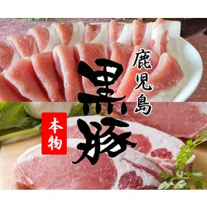 豚肉 黒豚 鹿児島 もも肉(スライス500g) ロース(とんかつ用100g×5枚)|ibusukiya