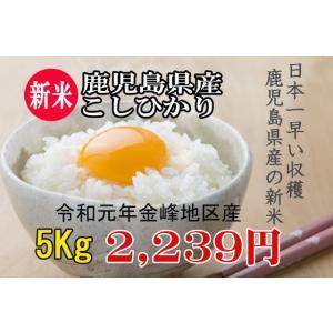 新米こしひかり  (米 九州) 平成29年 鹿児島県金峰産コ...