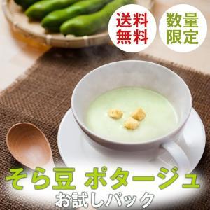 そら豆 ポタージュスープ お試しセット レトルト そら豆ポタージュ 指宿 160g×2杯分|ibusukiya