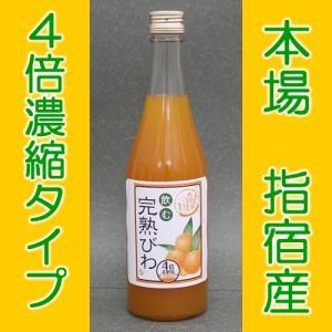 びわ ジュース 500ml フルーツジュース 果物ジュース 業務用 濃縮ジュース 飲む完熟びわ|ibusukiya