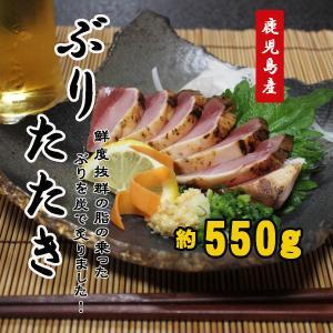 ぶりのたたき ブリ 鰤 タタキ 550g 鹿児島産 送料無料|ibusukiya