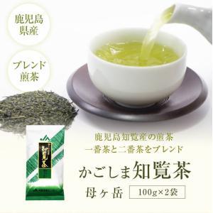 お茶 煎茶 知覧茶 母ヶ岳 鹿児島 100g×2 緑茶 JA 茶|ibusukiya