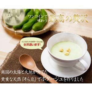 そら豆 ポタージュスープ レトルト そら豆ポタージュ 指宿 160g×5杯分|ibusukiya