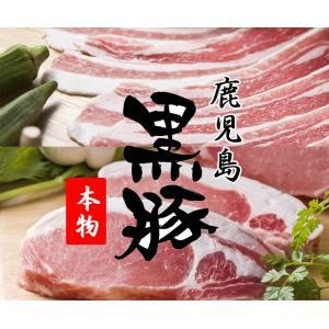 豚肉 黒豚 鹿児島 バラ肉(スライス500g) ロース(とんかつ用100g×5枚)|ibusukiya