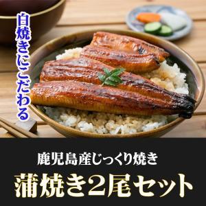 鰻 うなぎ ウナギ 鹿児島産 国産 うなぎ蒲焼セット 2尾|ibusukiya