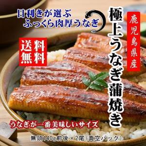 お中元 送料無料 鰻 うなぎ ウナギ  鹿児島産 国産 うなぎ蒲焼セット 2尾|ibusukiya
