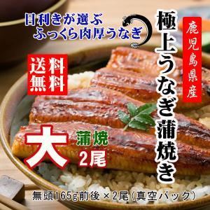 うなぎ 大 蒲焼き 国産 鹿児島 鰻 2尾 ギフト 内祝い|ibusukiya