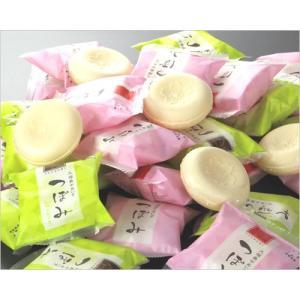 つぼみ業務用アイスクリーム(48個入り) ice-ouan