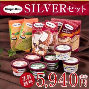 ハーゲンダッツ アイスクリーム 4,800円セット(ver....
