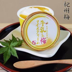 商品名:紀州南高梅アイスクリーム5個入り 内容:丹波牛乳の濃厚アイスクリームに甘酸っぱい南高梅のジュ...