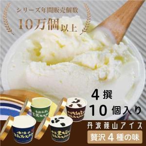 商品名:アイスクリームギフトセット 5撰×2個 計10個入り 内容:丹波牛乳(130ml)、丹波黒豆...