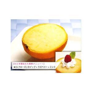 ハーフタイプ オレンジ(40個)|ice-suzuki