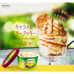 【期間限定販売】【HD】 ハーゲンダッツ アイスクリーム ミニカップ12個セット(キャラメルバターク...