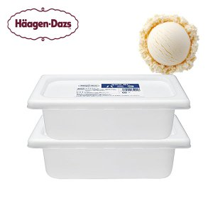 ハーゲンダッツ 業務用 アイスクリーム バニラ  2L×2個セット 北海道・沖縄・離島は配送不可