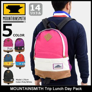 マウンテンスミス MOUNTAINSMITH トリップ ランチ デイパック(mountainsmith Trip Lunch Day Pack バックパック 40192)|icefield