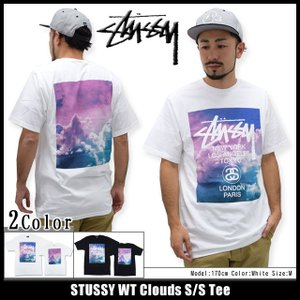 ステューシー STUSSY Tシャツ メンズ WT Clouds 1903689|icefield