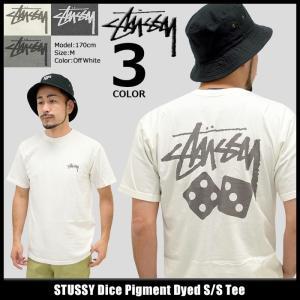ステューシー STUSSY Tシャツ メンズ Dice Pigment Dyed 1904076 (ピグメント)