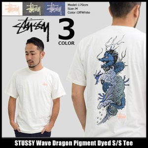 ステューシー STUSSY Tシャツ メンズ Wave Dragon Pigment Dyed 1904128 icefield