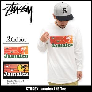 ステューシー STUSSY Tシャツ 長袖 メンズ Jamaica(stussy tee カットソー トップス ロンt 男性用 1993989) icefield