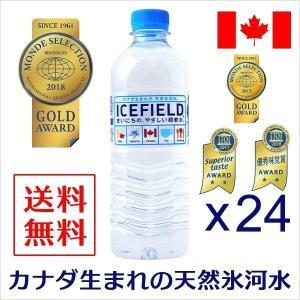 水 500ml×24本 ミネラルウォーター ICEFIELD アイスフィールド 軟水 カナダ天然氷河水