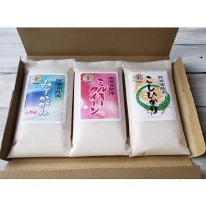 令和2年産 3品種 特別栽培米 食ベ比べセット(コシヒカリ・ミルキークイーン・みずかがみ)平袋箱3袋入りKY-3HTK|iceselection