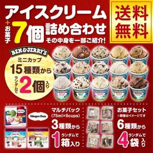ハーゲンダッツのマルチパック1個 ベンアンドジェリーズミニカップ2個お菓子4パック アイスとお菓子の詰め合わせセット ハロウィン SE-3|iceselection