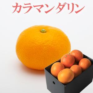 カラマンダリンは、数ある柑橘の中で最も樹になっている期間が長いので、果汁がとっても濃厚で、みかんの果...