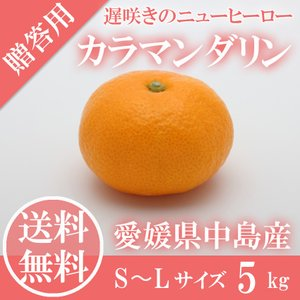 カラマンダリン 秀品 S〜Lサイズ 5kg (4月中旬から発...