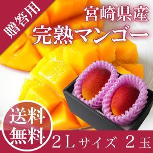 送料無料 完熟 マンゴー 2L 2玉入り 宮崎県産 母の日 父の日 御中元 ギフト