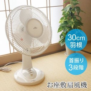 扇風機 お座敷扇 メカ式 30cm羽根 TEKNOS テクノ...