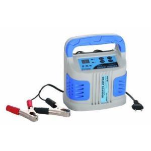 2A 6A 12Aタイプ ICバッテリーチャージャー 幅広い種類のバッテリーに対応 01.80.120.J ichibankanshop