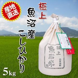 米 2018年産 30年産 極上魚沼米 5kg 一度食べたらヤミツキのおいしさ ご贈答にも最適 代引不可 同梱不可|ichibankanshop