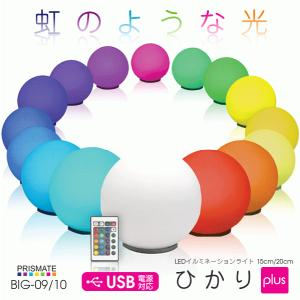 送料無料 LEDライト イルミネーション インテリアライト LED照明 インテリア 照明 雑貨 LED ひかり Plus 20cm BIG-10|ichibankanshop