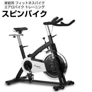 家庭用 フィットネスバイク ダイコウ DK-SP726 代引不可 同梱不可 ichibankanshop
