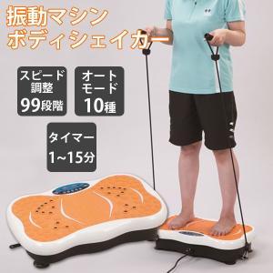 振動マシン シェイカー式 ボディシェーカー エクササイズ トレーニング 運動 家トレ エクササイズ機器 シェイカー式 El-80289 代引不可 同梱不可 ichibankanshop