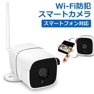 防犯カメラ Wi-Fiカメラ ペットカメラ ワイヤレス ワイヤレスカメラ 200万画素 屋内 屋外 HAC HAC2670 ichibankanshop