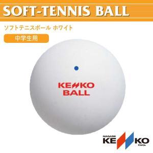 軟式テニスボール ケンコーソフトテニスボール ホワイト NAGASE KENKO TSOW-V|ichibankanshop