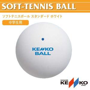 軟式テニスボール ケンコーソフトテニスボール スタンダード ホワイト NAGASE KENKO TSSW-V|ichibankanshop