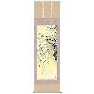 掛け軸 掛軸   花鳥画 桜花爛漫 森山観月 尺五 A6-09A ichifuji-store