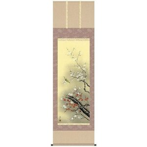 掛軸 掛け軸    花鳥画 紅白梅に鶯 田村竹世 尺五 A6-10D ichifuji-store