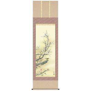 掛軸 掛け軸   花鳥画 梅に鶯 長江桂舟 尺五 A6-22A ichifuji-store