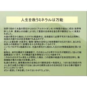 REAL Z-teraスーパーシリカエナジー ミネラル濃縮溶液 健康美容の基 サプリメント ichigo-japan 05